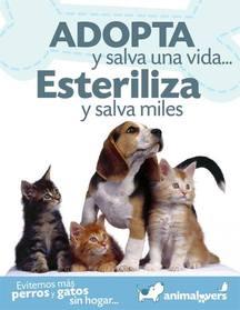 ¡Vuelve la campaña anual de Identificación y Esterilización de animales de compañía!