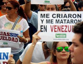 San Cristóbal marchó por unas Ferias Sin Crueldad