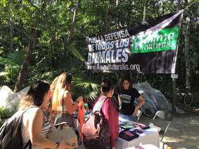 """¡Participamos en la segunda edición del """"Tulum Vegan Fest""""!"""