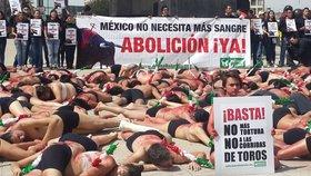 """¡Cientos de activistas se pusieron """"En la piel del toro""""!"""