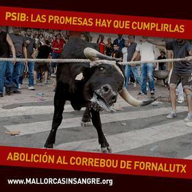 350.000 personas piden a los socialistas la abolición del correbou de Fornalutx