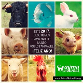2016, un año más de victorias para los animales