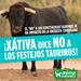 ¡Xàtiva dice NO a los toros en consulta ciudadana!