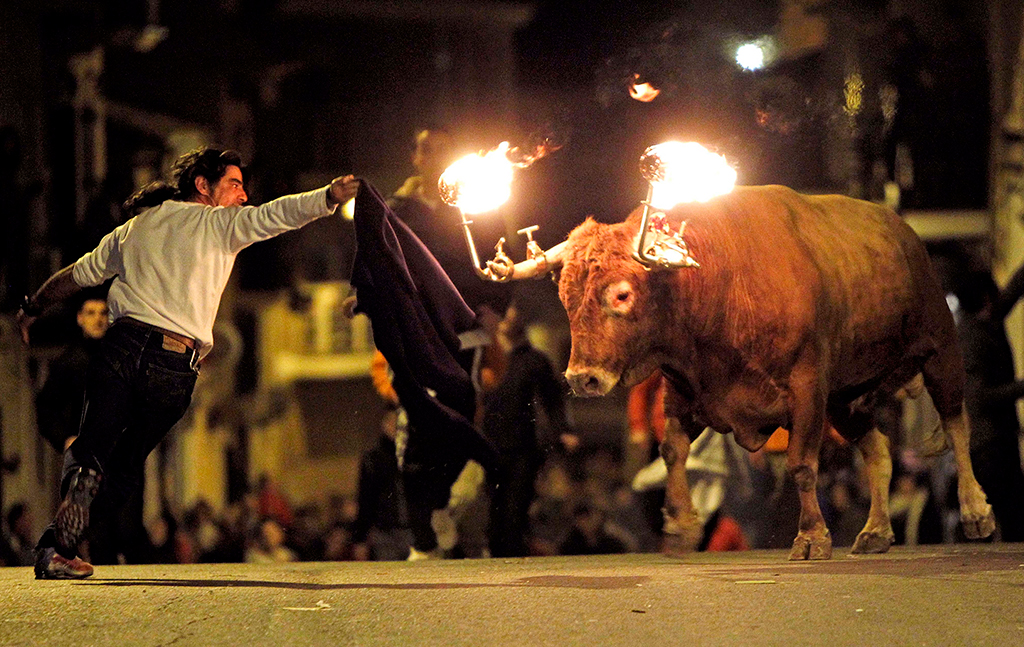 Fire bulls